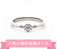 BIJOUPIKO(ビジュピコ)福井店の婚約指輪、アイレ